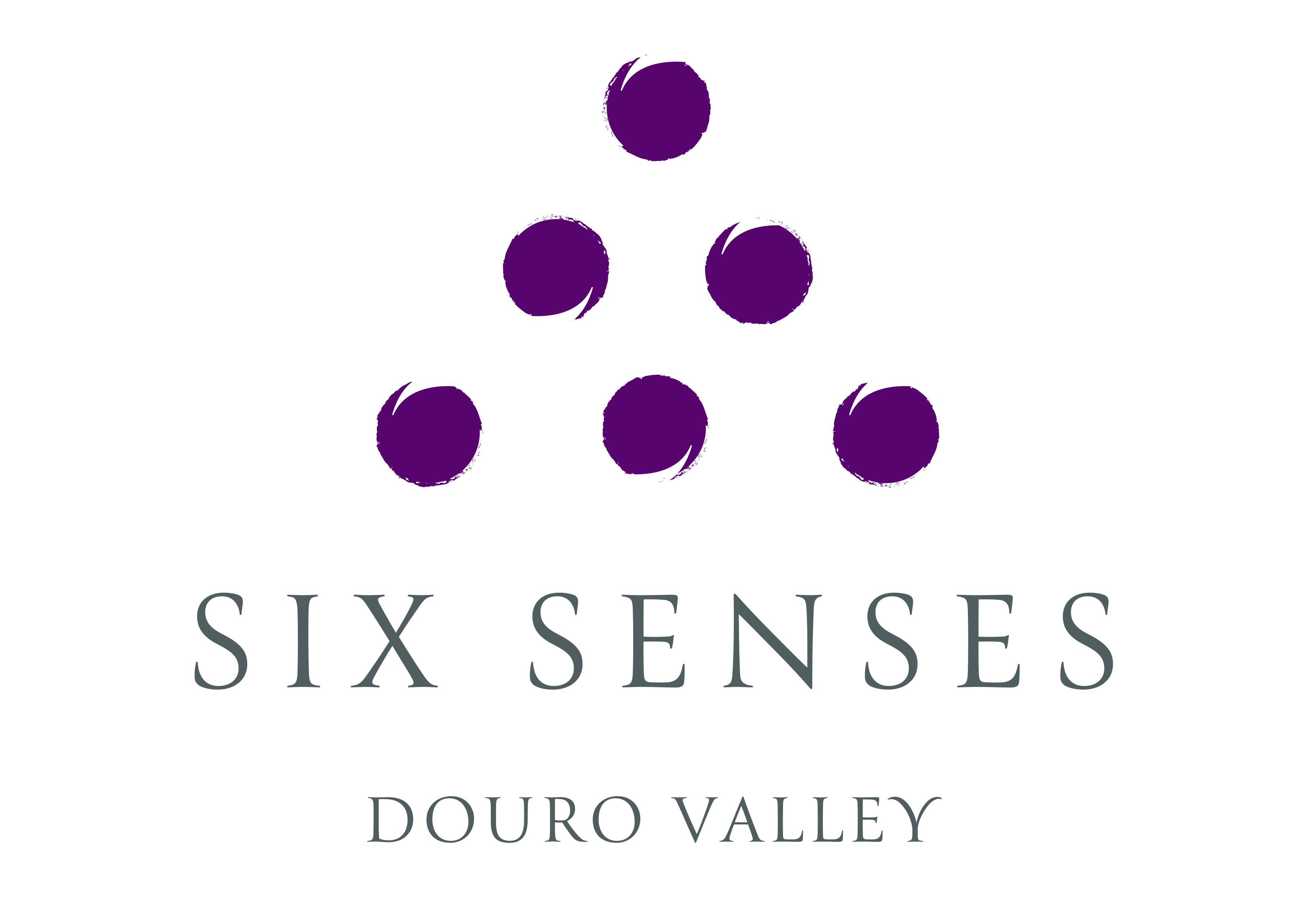 SSDV_standard_logo