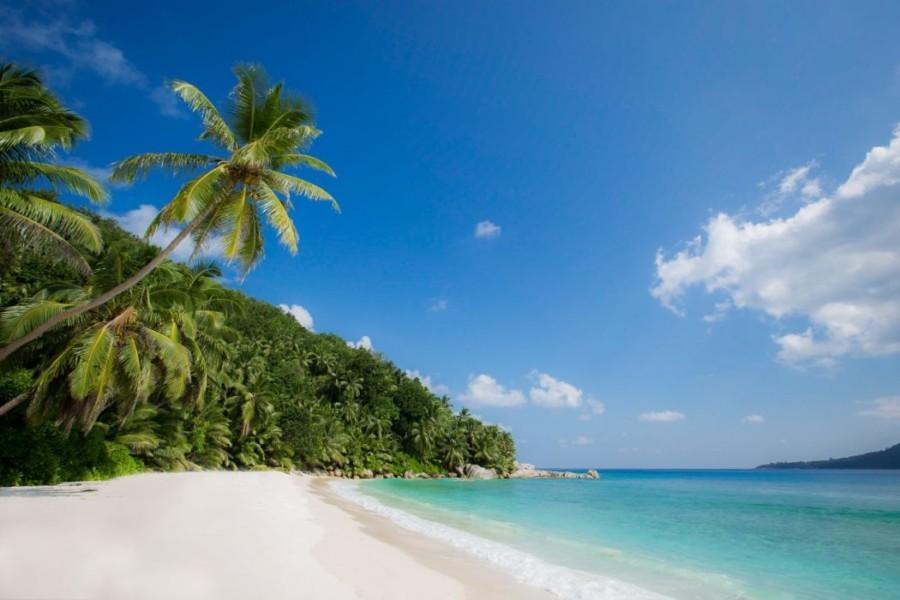 SSZP_Grand_Anse_Beach1