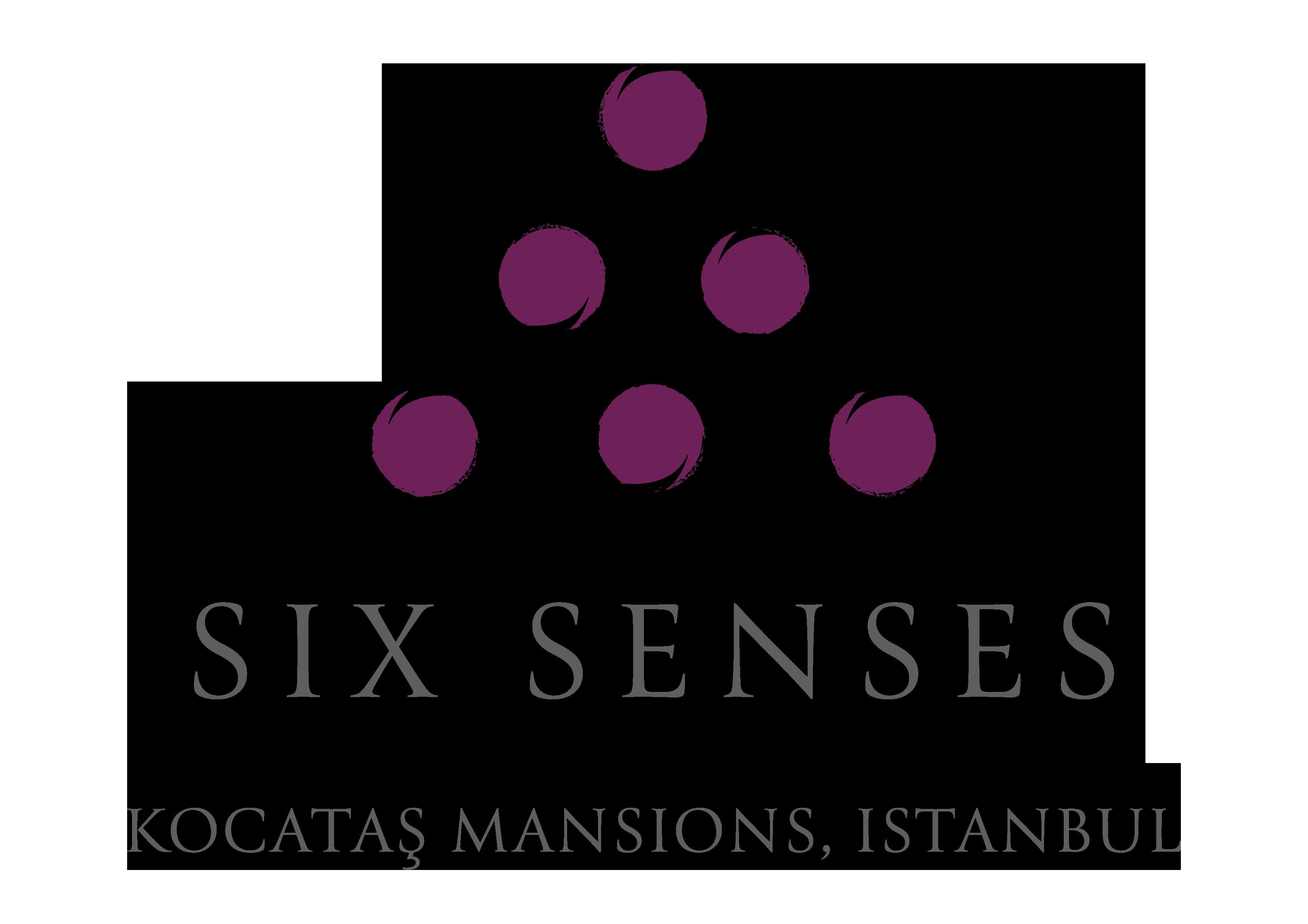 SS_Kocatas_standard_color_logo