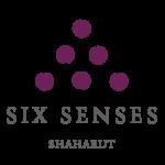 SS_Shaharut_standard_logo